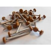 30mm Golden Oak Pins (250) RAL8001
