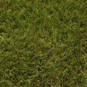 Artificial Grass Verdigris 40mm pile 2mtr x 1mtr